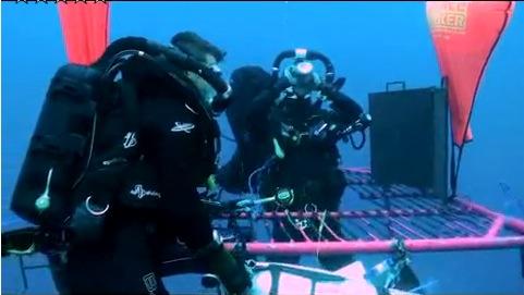 ダイビング 潜水