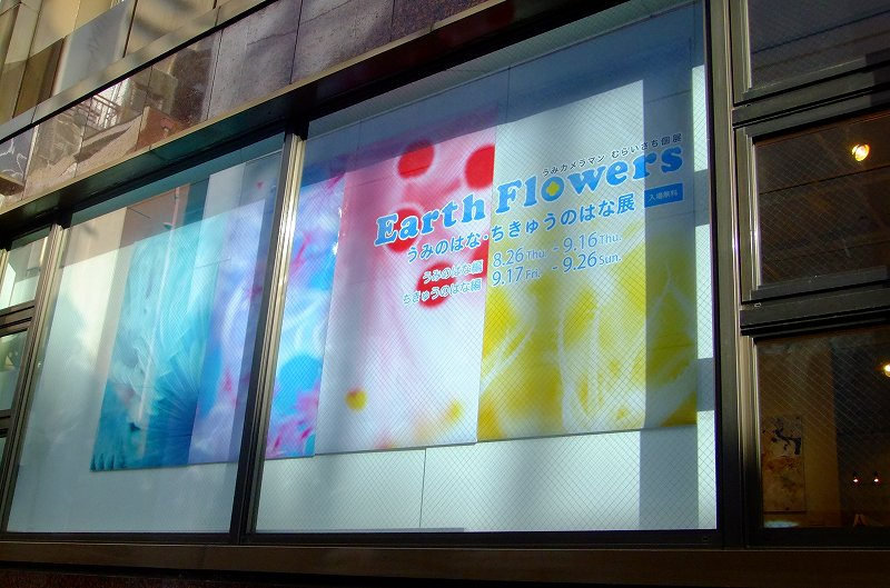 Earth Flowers 写真展 むらいさち