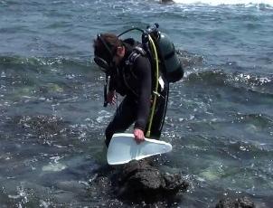 岩場をエントリー&エグジットする際のコツ ~ダイバーのためのプチ裏技~